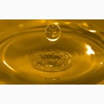 Масло подсолнечное нерафинированное невымороженное. ОПТ. ЭКСПОРТ