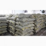 22 тонны грецкого ореха 30+ на экспорт