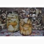СОК Шепітчанка продає гриб білий консервований - 150грн