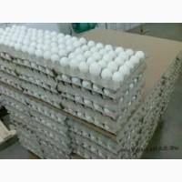 Реализуем яйцо куриное оптовые продажи доставка по всей территории Украины