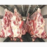 Свіже фермерське м#039;ясо з доставкою по місту Київ