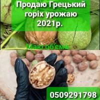 Продаю круглий Грецький горіх урожай 2021р, Полтавская обл