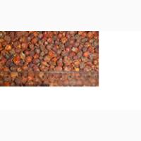 Продам плоди глоду (бояришника) від 1 до 7 тн