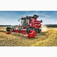 Куплю зерно: пшеницу с вашего региона