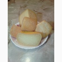 Сулугуни, Моцарелла, Халуми, Брынза сыр домашнего производства