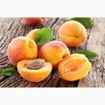 Срочно закупаем абрикосы не стандарт