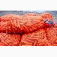 Продам Морковь Разных Сортов Доставка