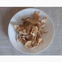 Корень кубышки (кубышка (кувшинка) желтая) 100 грамм