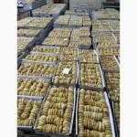 Продам сушеный инжир оптом, Турция, завоз февраль 2016