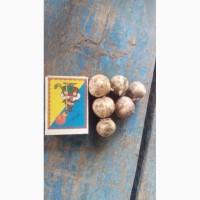 Продам посевной материал чеснока сорт Любаша