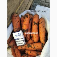 Морковь РОМАНС