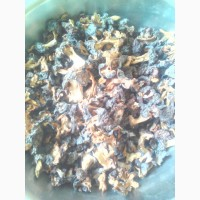 Продам сушенные грибы строчки 2021 г сбора