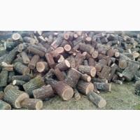 Дубові дрова | Оперативна доставка та вивантаження Луцьк