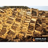 Дрова Луцьк Купити дрова оптом Луцьк і область ціна за куб