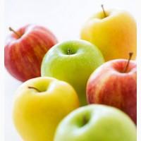 Покупаем сортовое яблоко от 10 тонн. Винницкая область Подбор не покупаем