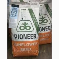 Продам посівний матеріал насіння соняшнику Пионер Е71