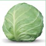 Семена белокачанной капусты AKIRA F1 / АКИРА F1 (Китано)