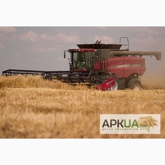 Закупаем ФУРАЖНУЮ пшеницу