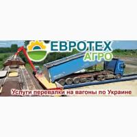 Погрузка на вагоны всех видов зерновых Черниговская, Сумская область