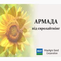 Насіння соняшнику гібрид Армада (Турція)/ гібриди виробництва «MAY AGRO SEED (Мей Агро)»