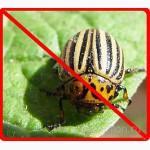 Продам инсектицид