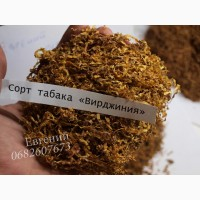 Качественный, ароматный табак «Вирджиния» - ферментированный, недорого