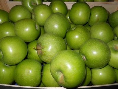 Фото 8. Продам яблоки