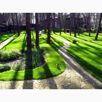 Газон Киев. Создание газонов