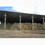 Оптовая продажа сена: луговое, люцерна, солома 2017