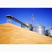Экспортируем зерновые- ячмень, пшеница, соя