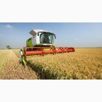 Предприятие ищет комбайны ведущих производителей, для уборки урожая 2021 года