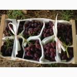 Продаем виноград из Испании