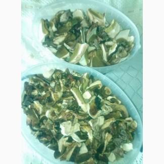 Продам сухие грибы: белые, трутовики берёзовый, серчано-жёлтый, весёлка обыкновенная