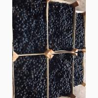 Продам виноград, опт з холодильника