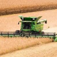 Компания ищет комбайны с экипажем для уборки ранних и поздних зерновых культур