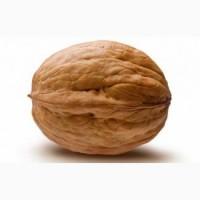 Продам грецкий орех урожай 2018 года.Тернополь