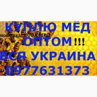 Закупка мёда в ХЕРСОНСКОЙ И ЗАПОРОЖСКОЙ области от 500 кг