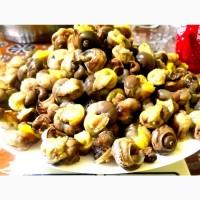 Продам філе або м#039;ясо равлика