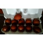 Инкубационное яйцо кур породы-Маран