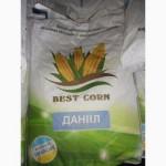 Продам гібрид кукурузи ДАНІІЛ (урож.2015 р.)