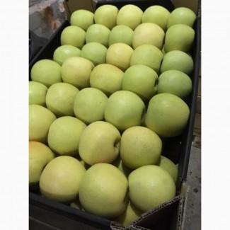 Яблука з холодильника, експорт