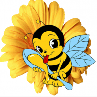 Продам пчелопакети карпатка
