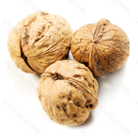 Орех неочищенный, просушенный, тонкокорый. (Экспорт)/WALNUT INSHELL, DRIED, THIN-SHELLED