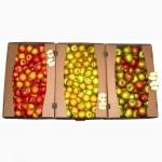 Ящики для яблок, лотки для яблок, тара для яблок