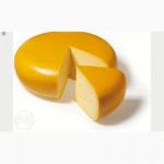 Сырный продукт, сыр