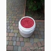 Продам фасоль красную