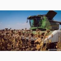 Предприятие возьмет в аренду комбайны с экипажем для уборки пшеницы, ячменя, рапса
