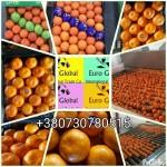 Продам мандарины с ТУРЦИИ
