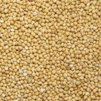 Купуємо зерно пшениці овса, проса, гречки, ячменю