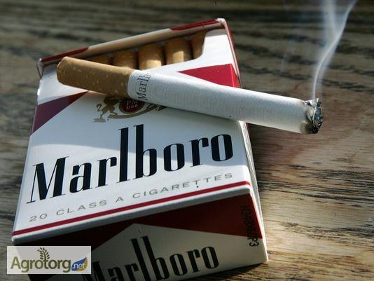 Ферментированные сигареты купить сигареты парламент мелкий опт